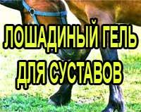 Лошадиный гель для суставов