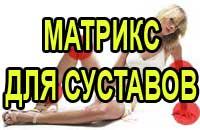 Матрикс для суставов