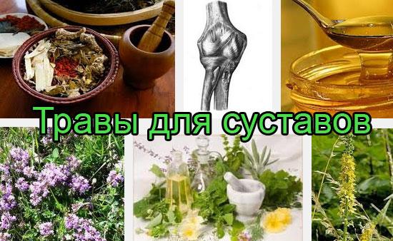 Травы для лечения суставов